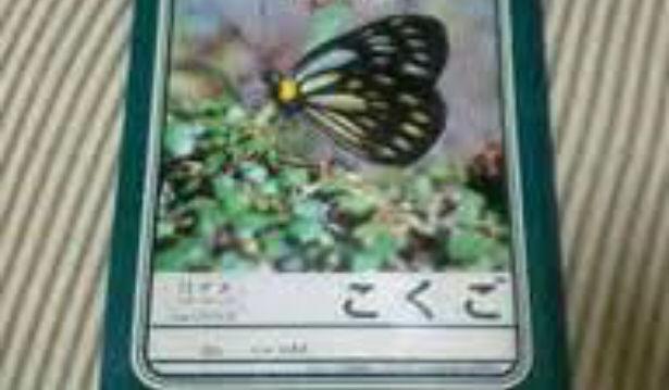 8dfb8192