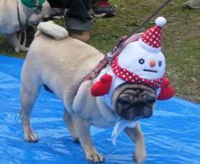 2012_1111kasou snowman