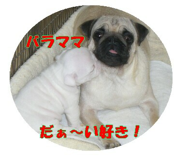 7db3869f.jpg