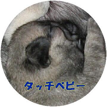 9ffe7d9b.jpg