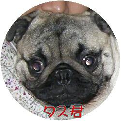 e7285ee3.jpg