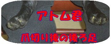 ee0b49f4.jpg