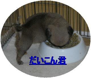 f1e2851b.jpg