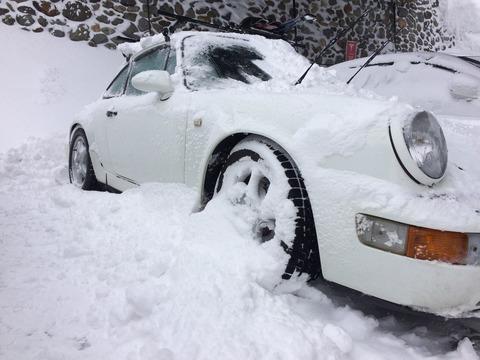 めっちゃ雪!