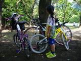 この日の自転車
