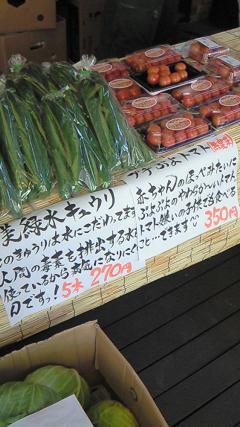 100728野菜