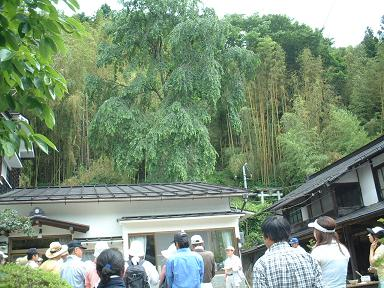 「竹の子掘り交流会」01