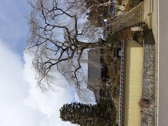 170310昌建寺