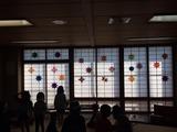 20141205ちゅうりっぷ5
