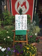 20140517落合恵子さん
