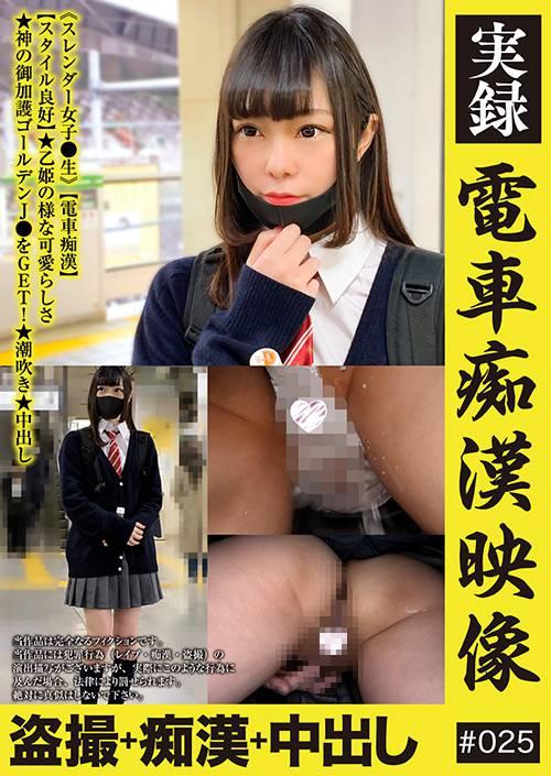 実録 電車痴漢映像 #025