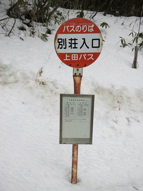 吉田ブログ写真