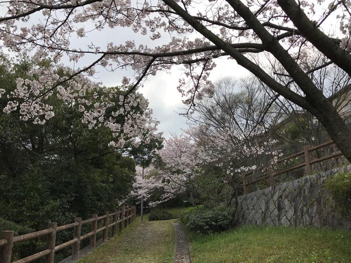 2017-04-09-14-59-52