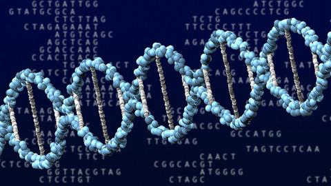 【科学】オス2匹からマウス誕生…精子の遺伝情報で