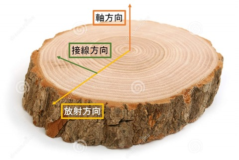 cross-section-tree
