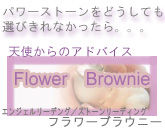 flower-brownie-baner2