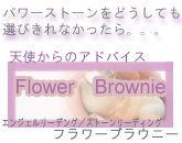 flower-brownie-baner2