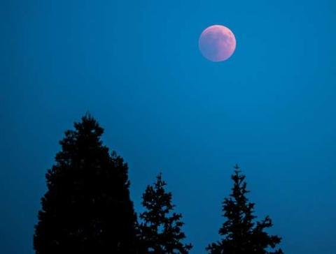 Mond-