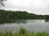 松原湖 (4)