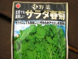 s-090909 あぷりこ 春菊種蒔き 034
