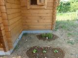 s-201006 あぷりこ菜園 025