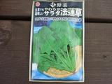 s-20100920 猫 畑 014