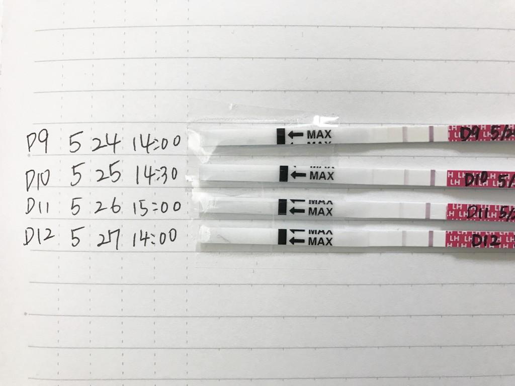 薬 排卵 ラッキー テスト 検査