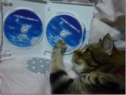 小林正観さん講演会DVD