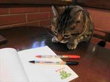 喜びニジますペン