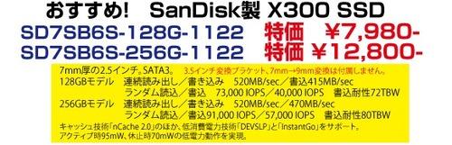 SANDISK_SSD