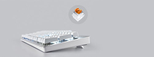 razer-pro-type-orange-mechanical-switches-desktop