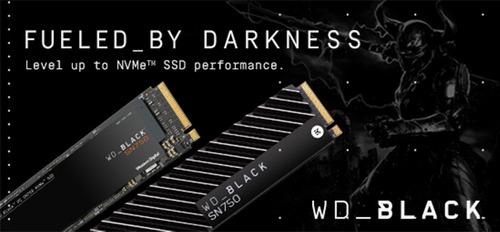 WDS500G3X0C_03