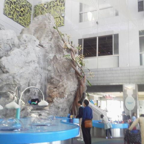 水の科学館に隣接、ロハスカフェARIAKE