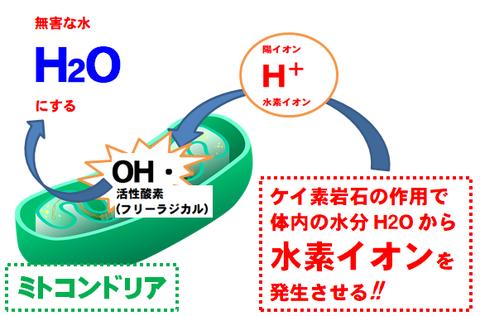 SSによる ミトコンドリアの活性酸素水素で 無害化 画像01god