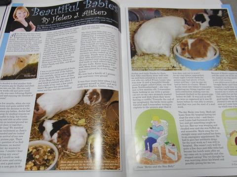 モルモット専門誌「ギニーピッグマガジン(Guinea Pig Magazine)」レビュー