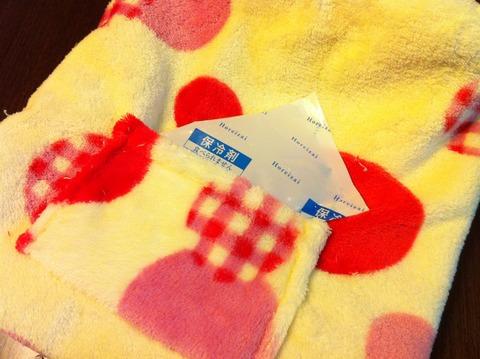温冷対応のモルモット用寝袋をつくってみた。