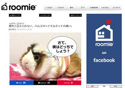 roomie_moruhamu