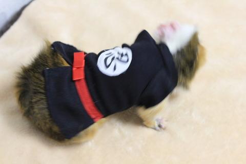 忍者ラテ参上!ニンニン☆ 忍者服NGショット集