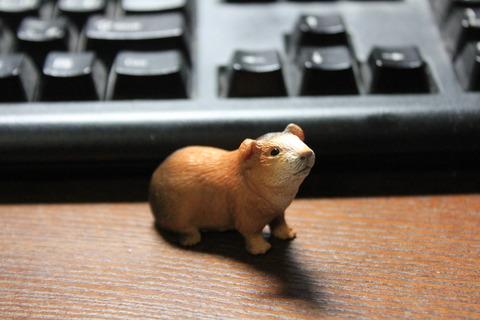 モルモットもあった!ドイツのおもちゃブランド「Schleich(シュライヒ)」の動物フィギュア