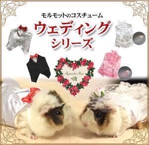 banner_wedding_m