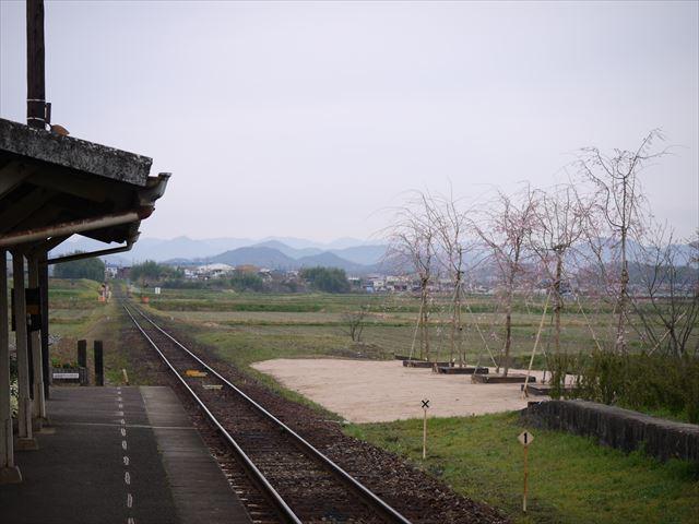 20140405_加西の桜 (71)_R