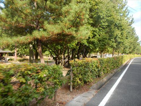 20131026_岡山ソロツー� (22)_R