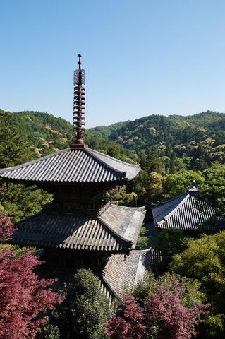 20170514_一条寺 (58)