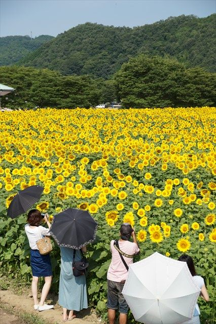 20140720_プチツー(佐用) (15)_R