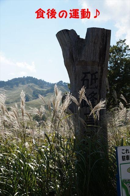 20150927_OSG生野ツー (113)_R