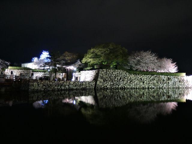20160402_夜桜とか (116)_R