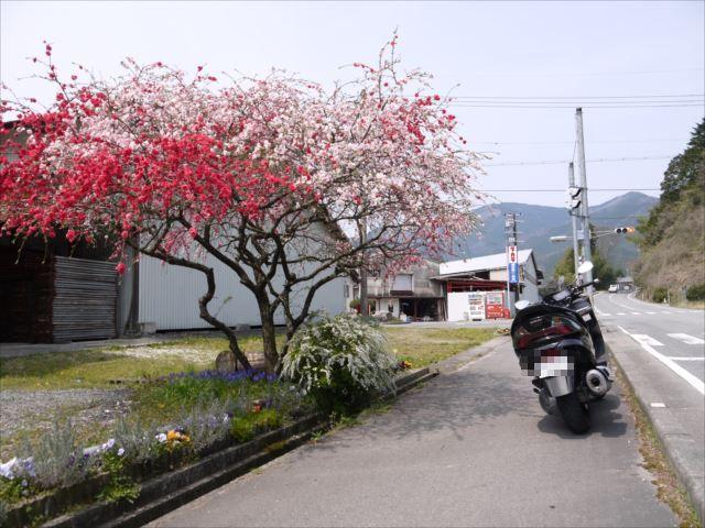 140412_プチツー多可町2 (3)_R