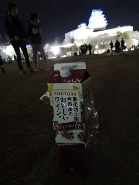 20160402_夜桜とか (108)_R