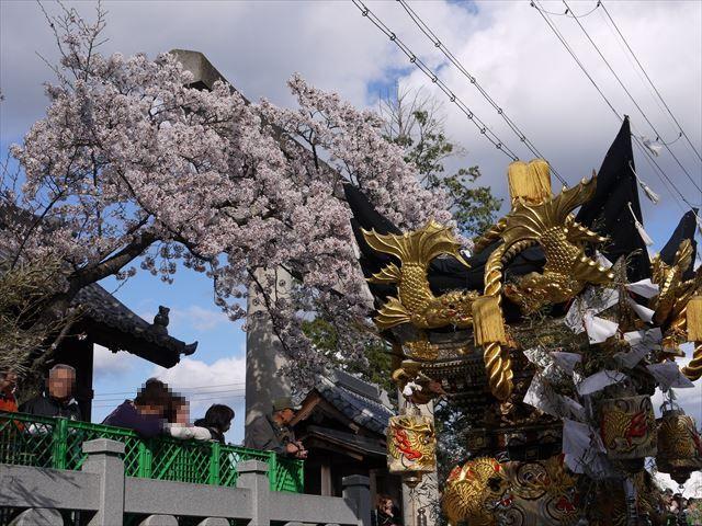 20140406_節句祭り他 (56)_R