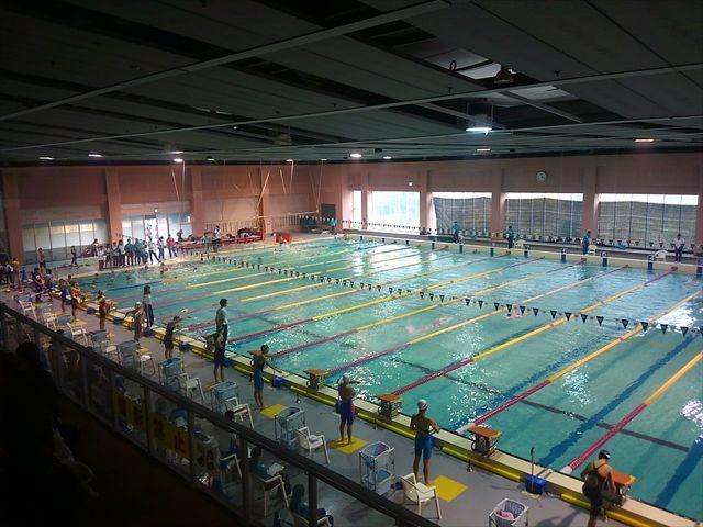 20161120_琴と競泳 (193)_R